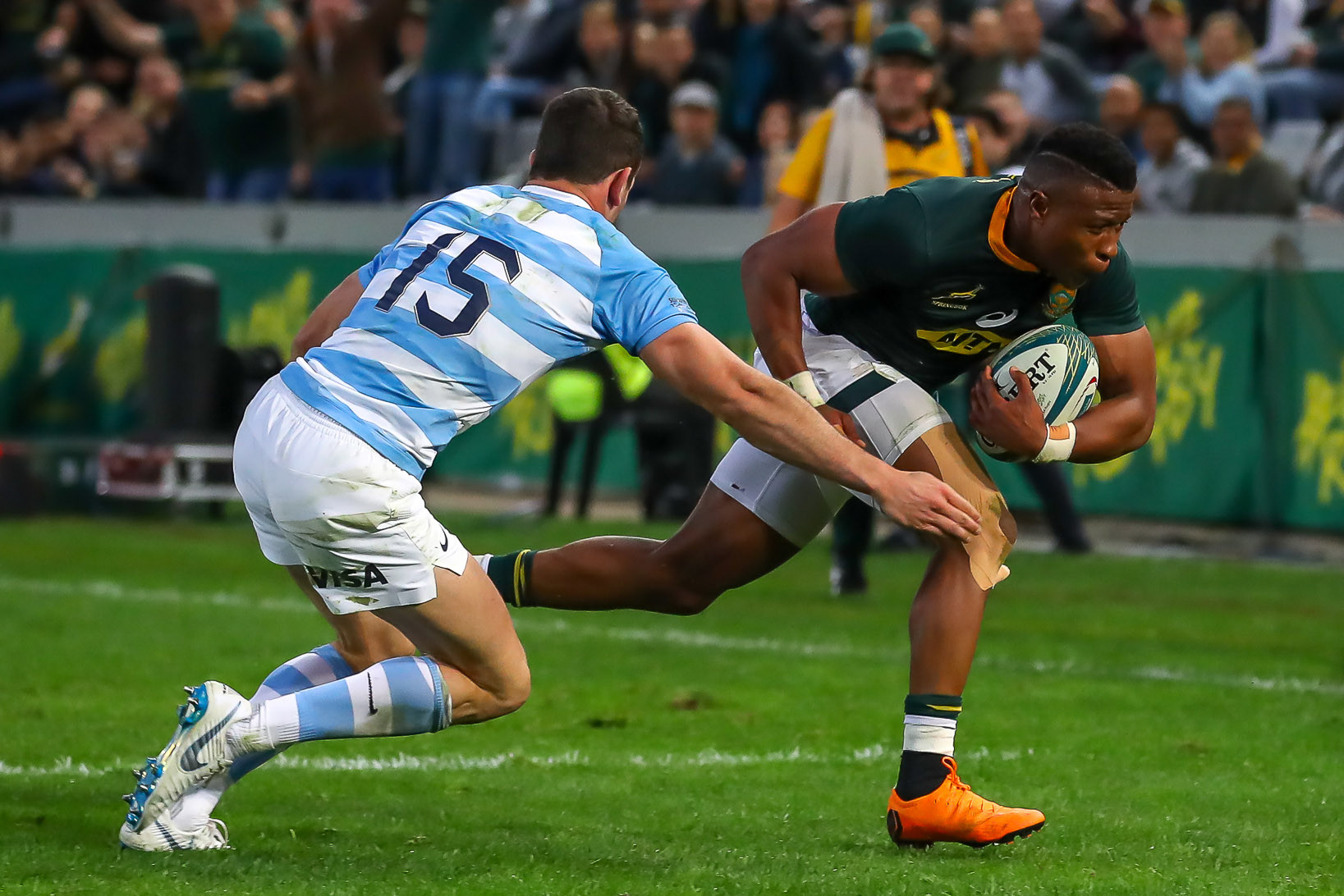 18 August 2018: Aphiwe Dyantyi put in a man of the match performance during the Rugby Championship match between South Africa and Argentina at Kings Park in Durban. (Photo by Gordon Arons/Gallo Images)