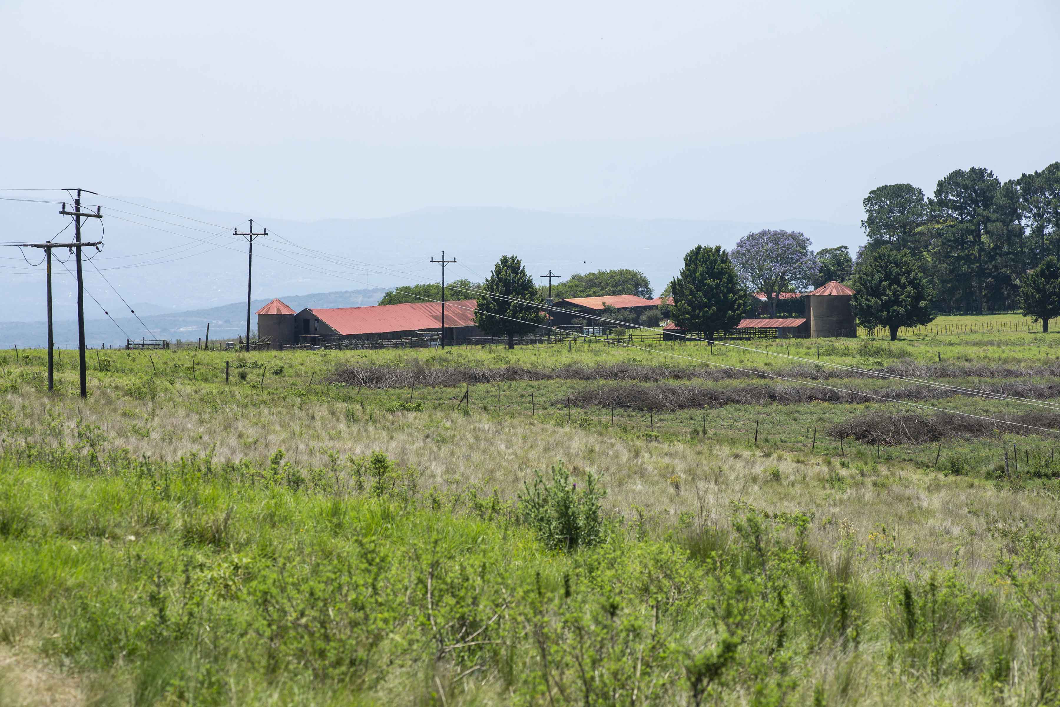 13 November 2018: The farm which community members allege is being leased to playwright Mbongeni Ngema.