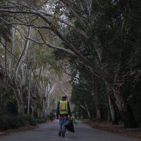 11 April 2019: A homeless man walks down a tree-lined street in one of Johannesburg's affluent Northern suburbs.