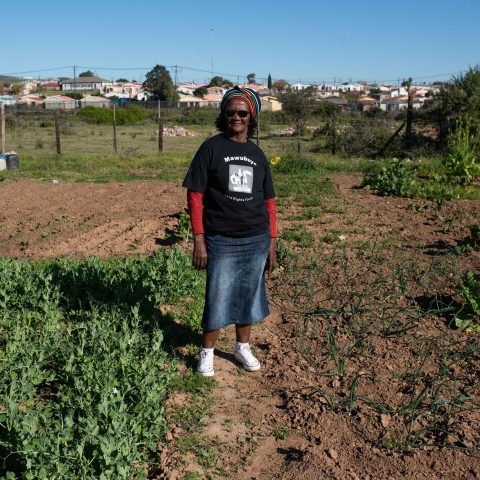 30 July 2019: Urban farmer Virginia Kima, who has occupied 2 hectares of land close to a river in Khayelitsha, near Uitenhage in the Eastern Cape, where she is farming vegetables.