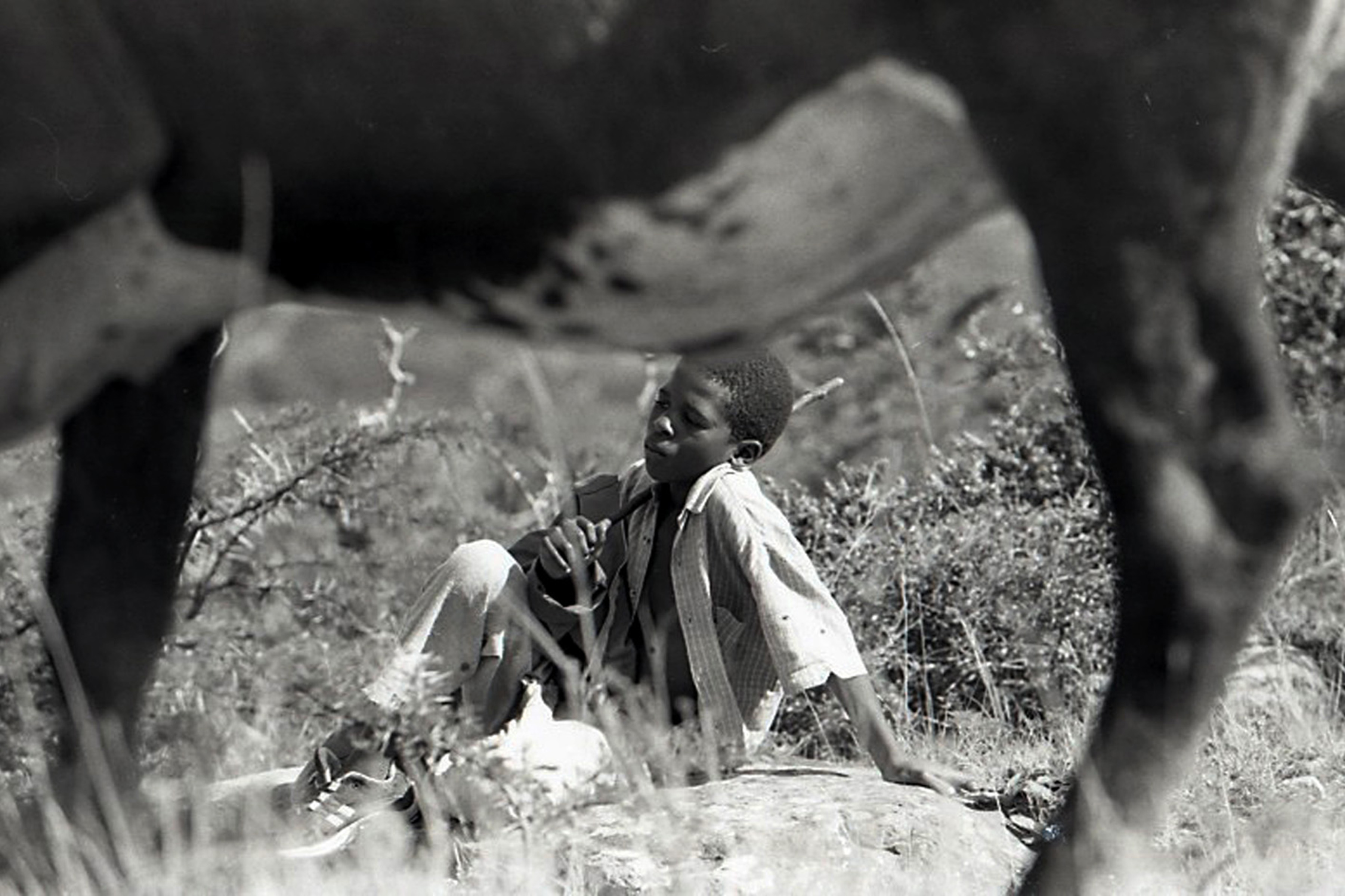 2001: A young boy tending his parent's cattle on the outskirts of Ncera, Alice. A slice of an ongoing life caught on black and white film. (Photograph by Bonile Bam)