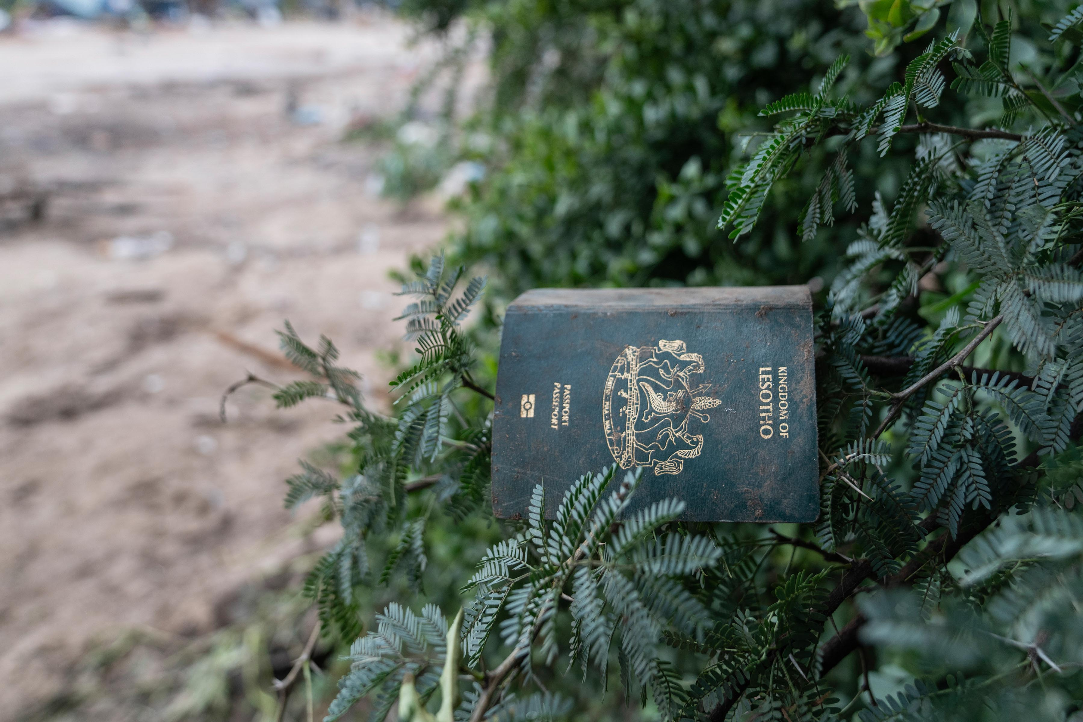 12 December 2019: A Lesotho passport belonging to a Mushroomville resident, salvaged and left to dry on a tree.