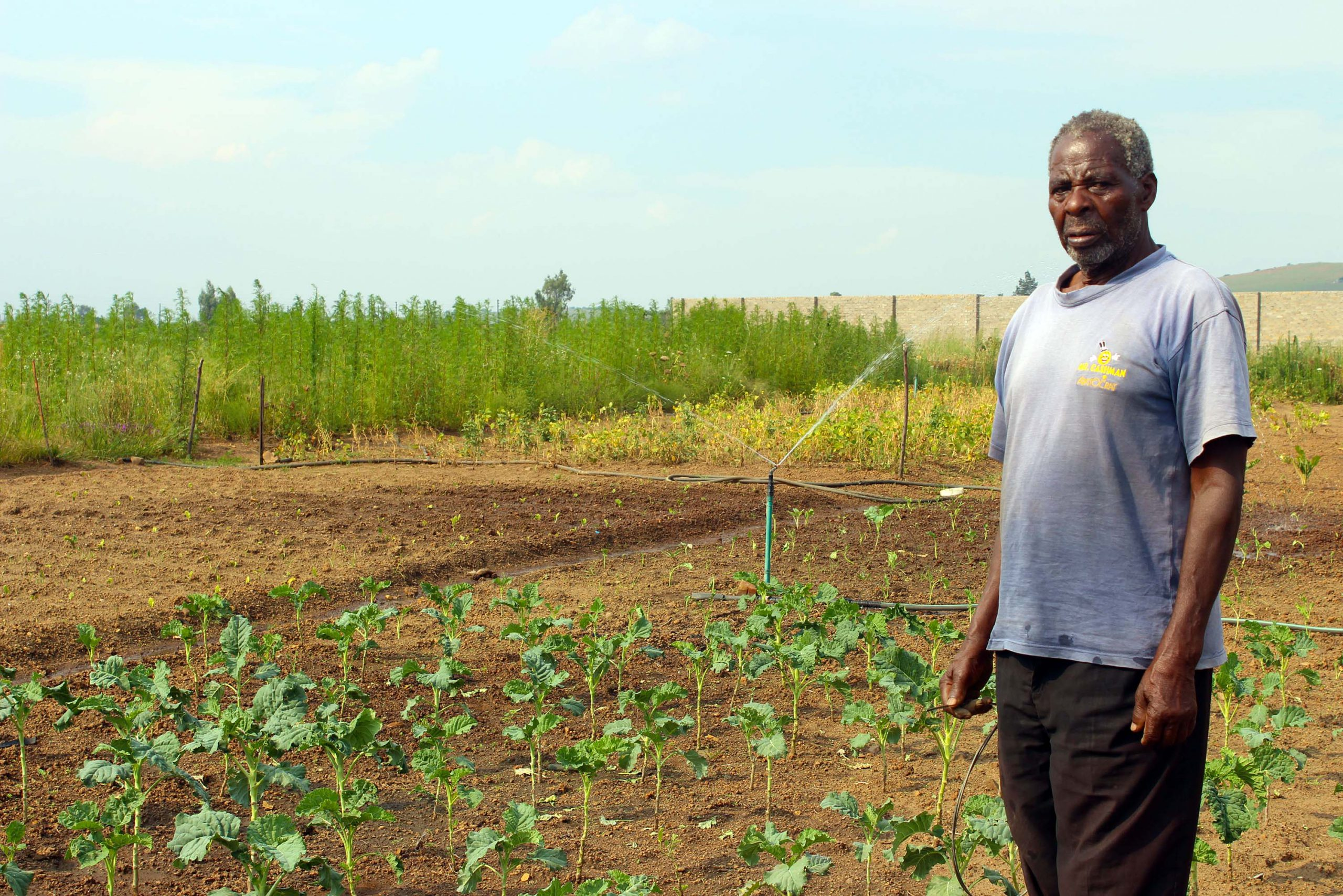 18 March 2019: Mahlomelane Johannes Mthembu on his farm about 11km from De Deur in Gauteng.  (Photograph by Funiwe Ngwenya)