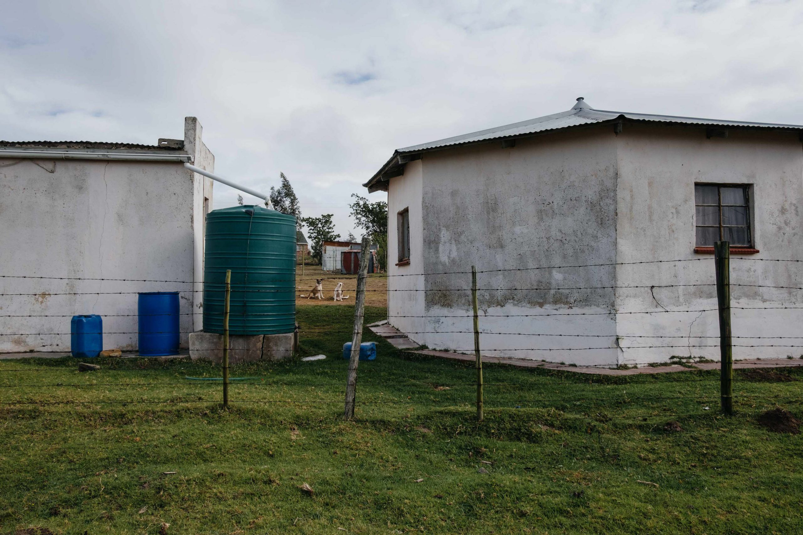 11 November 2019: A water tank designed to capture rainfall from a roof in Nqgwele Village, Ngqushwa Municipality, Eastern Cape. Rainwater harvesting is an important measure against the effects of climate change, but is often insufficient.