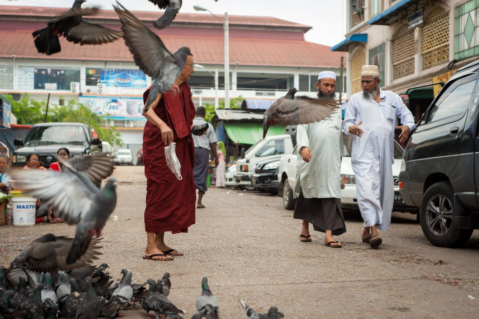 14 May 2013: A Buddhist monk feeds pigeons in downtown Yangon, Myanmar, while Muslim men walk past.