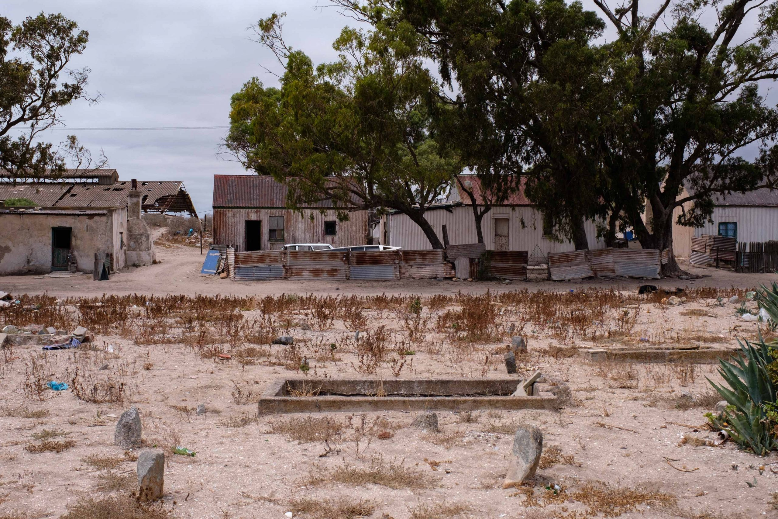 22 January 2020: The ruins of the old fish-canning factory can be seen from the old cemetery. Property developer West Coast Miracles has threatened the people living in the homes in the foreground with relocation.