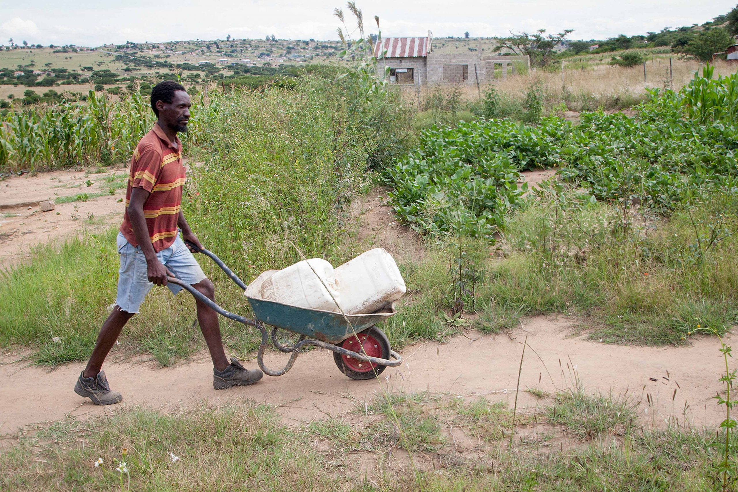 13 March 2020: When the water truck fails to arrive near his home, Mzwakhe Ngema walks to a communal tap to collect water for his children.