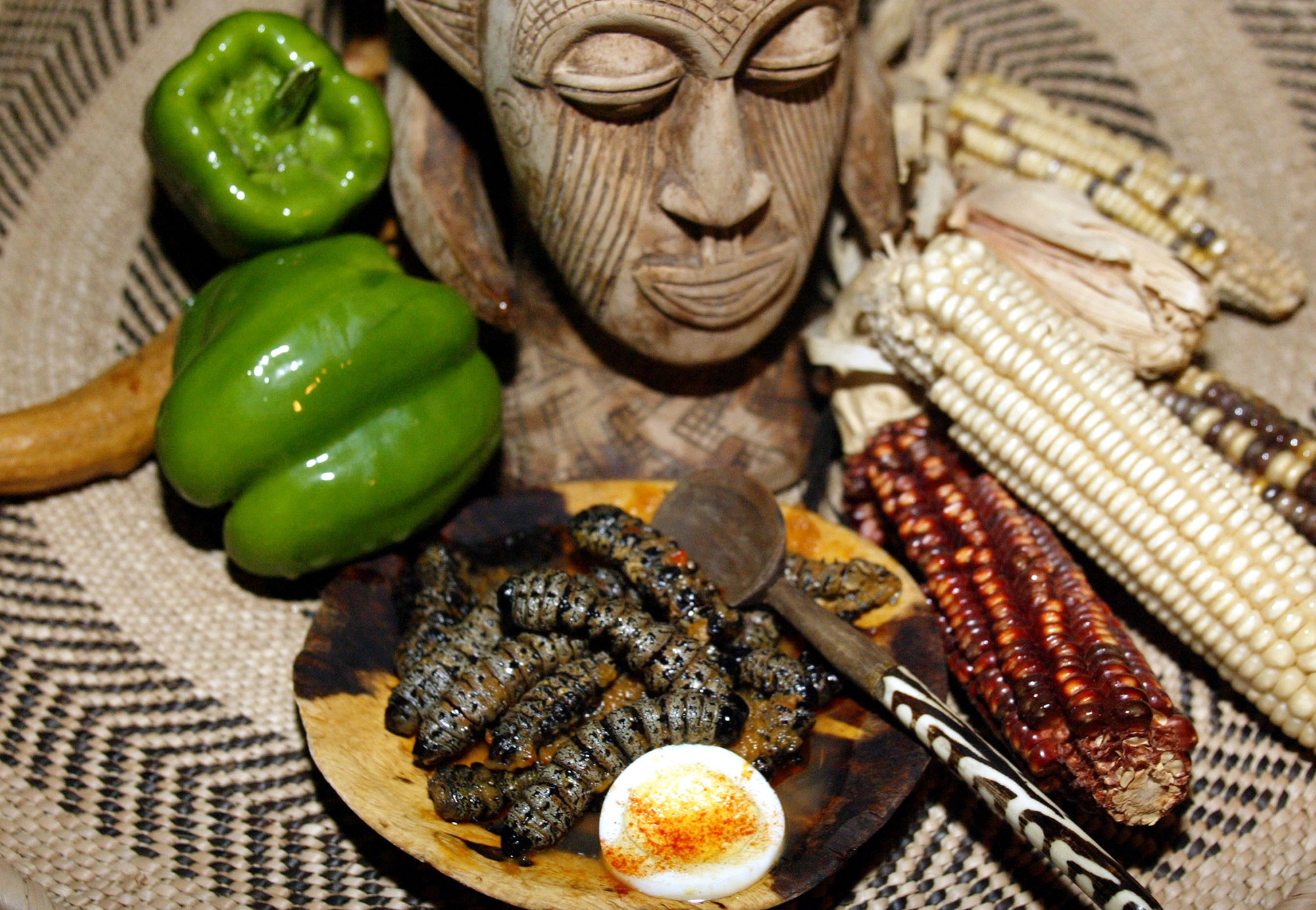 Mopani worms are displayed on a dish at a restaurant in Johannesburg September 14, 2006. Worms, an easily obtainable source of free food and most often served in a sauce, are a delicacy to most people living in Southern Africa. Photograph by Siphiwe Sibeko/Reuters.