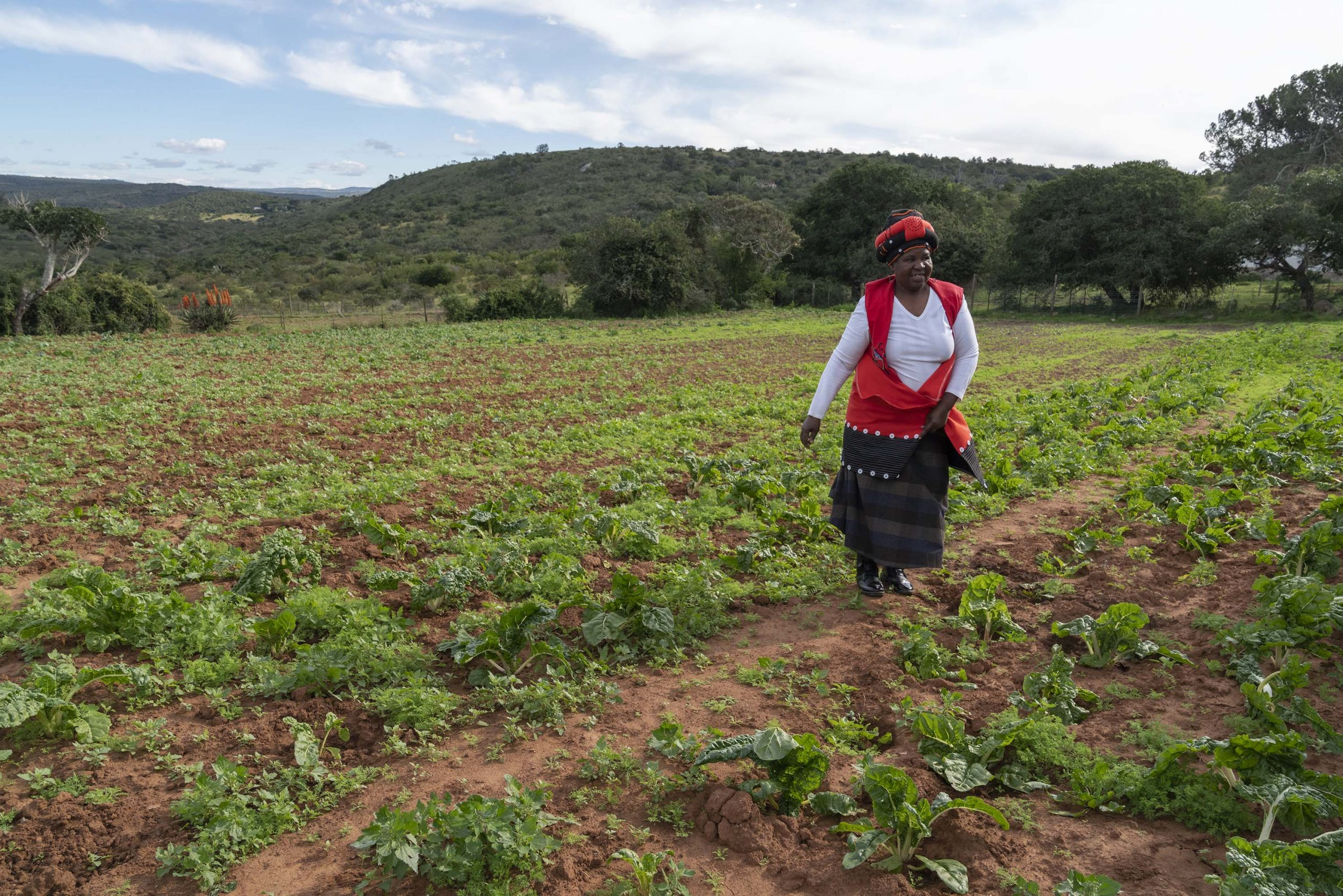 1 July 2019: Lungiswa Madinda inspects some of the vegetables she is growing at Castle Farm.