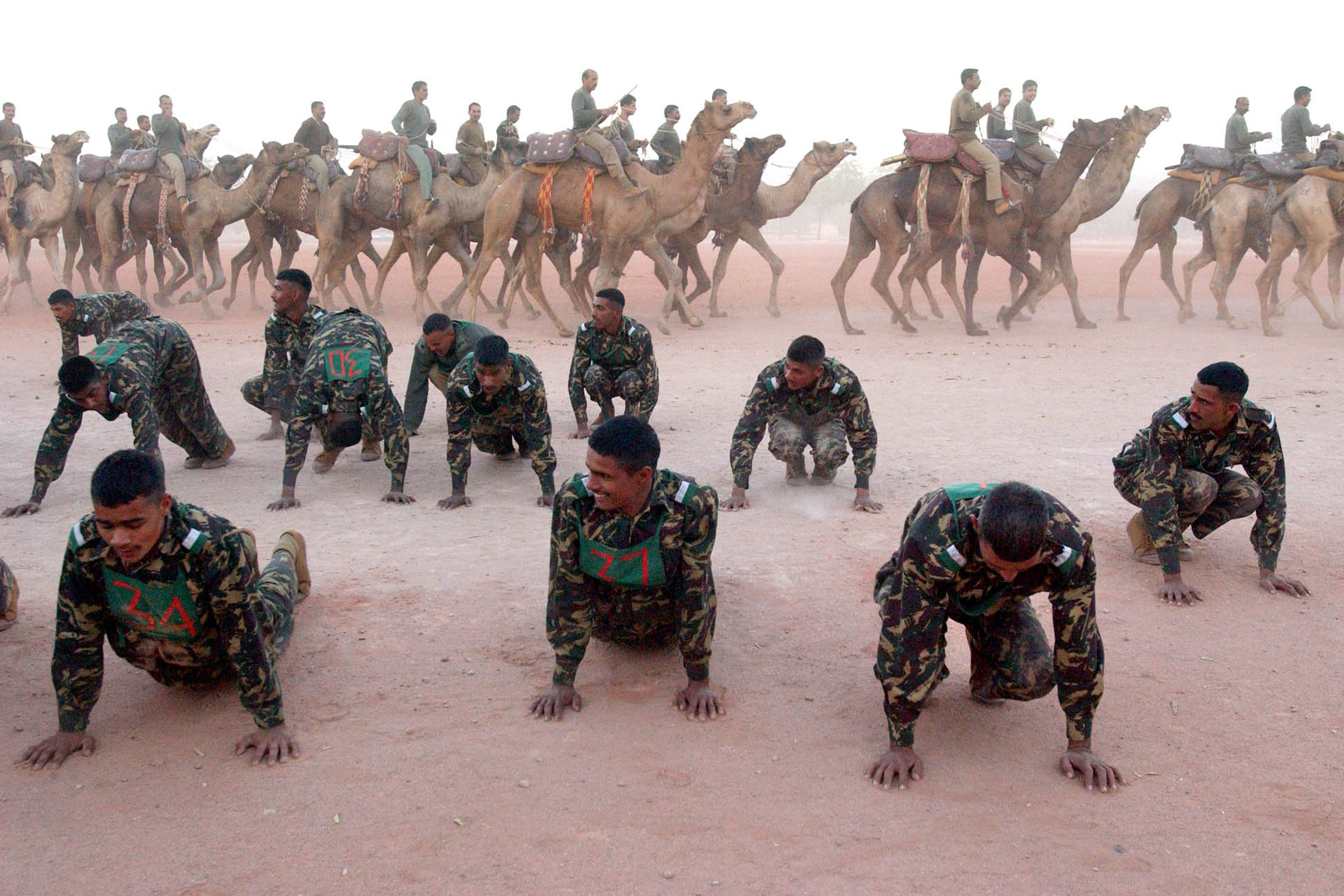 10 February 2004: Constables with India's Border Security Force do drills at a centre in Jodhpur where they train camels that can survive the harsh desert conditions in Rajasthan along the Pakistan border. (Photograph by Ami Vitale/ Getty Images)