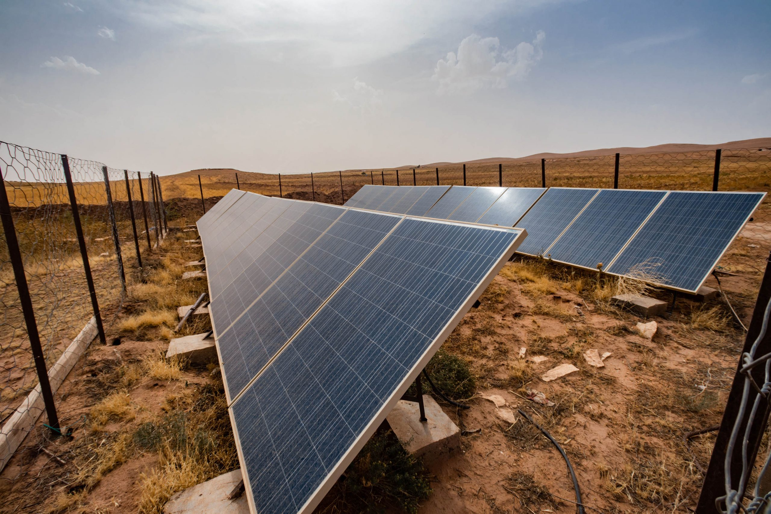 27 June 2020: An investor financed the installation of solar panels to power the well Mohamed Dahmoune uses to irrigate his lucerne fields. (Photograph by Abderazak HadjTahar)